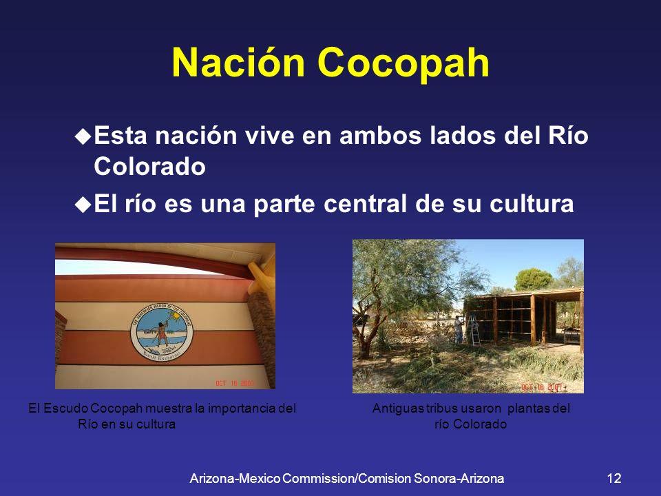 Arizona-Mexico Commission/Comision Sonora-Arizona12 Nación Cocopah Esta nación vive en ambos lados del Río Colorado El río es una parte central de su