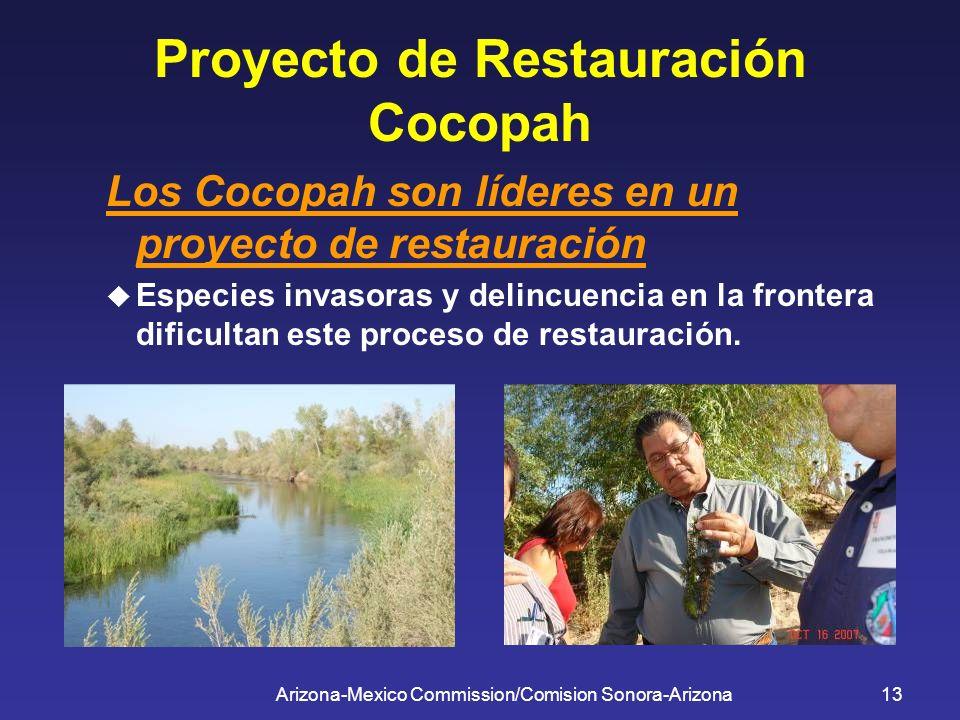 Arizona-Mexico Commission/Comision Sonora-Arizona13 Proyecto de Restauración Cocopah Los Cocopah son líderes en un proyecto de restauración Especies i