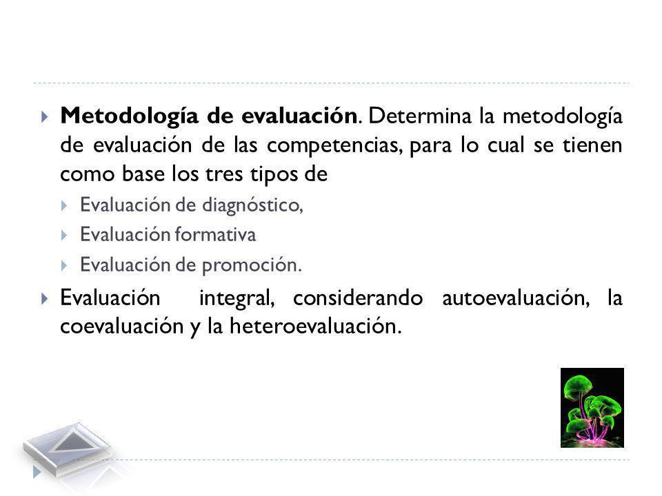 Metodología de formación. Consiste en planeación de las actividades mediante las cuales se van a formar las competencias descritas en el Plan de Forma