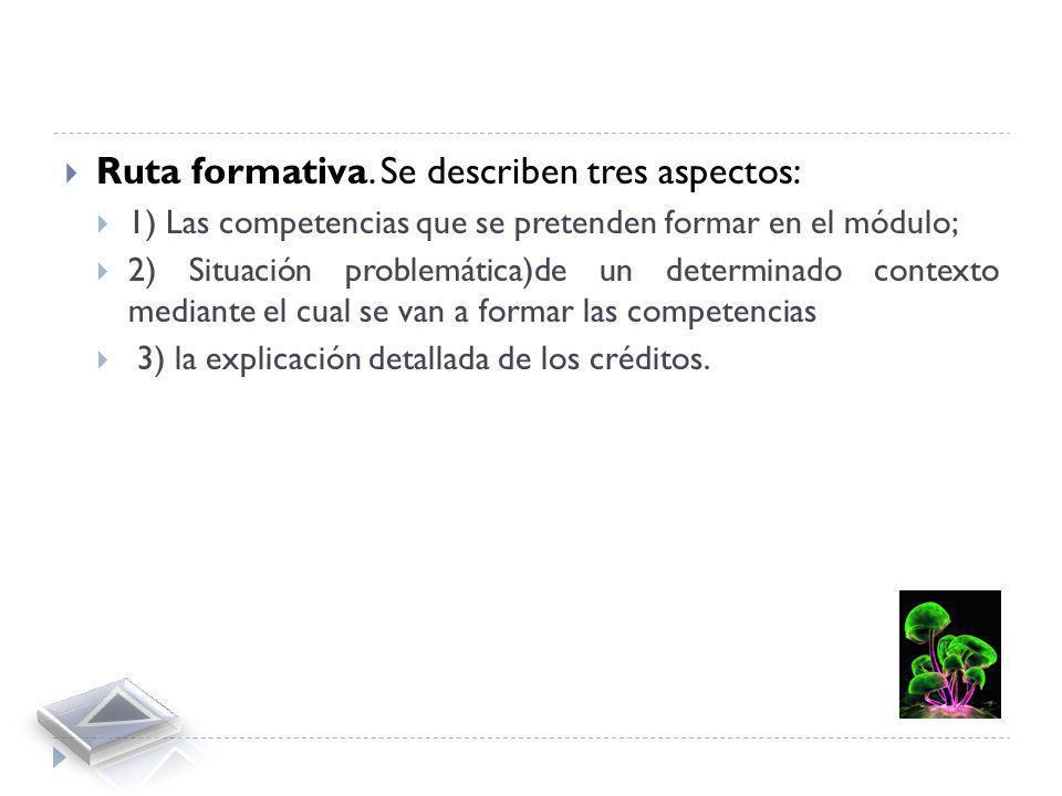 Presentación formal. Consiste en la identificación del módulo dentro del plan de estudios. Describe aspectos tales como el nombre de la institución, e