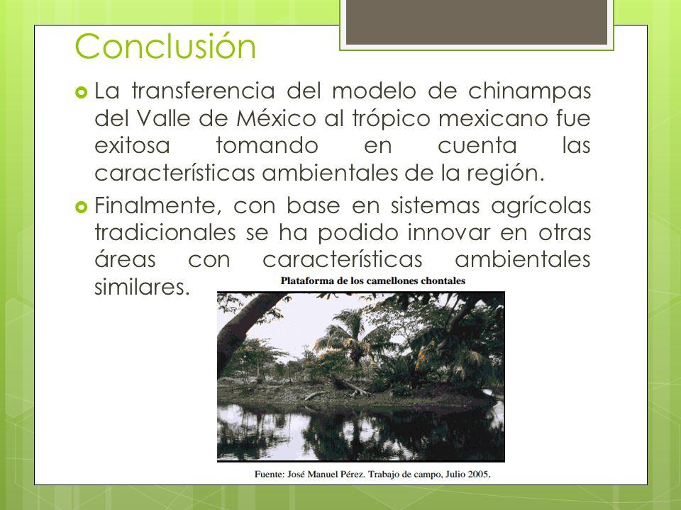 Conclusión La transferencia del modelo de chinampas del Valle de México al trópico mexicano fue exitosa tomando en cuenta las características ambienta
