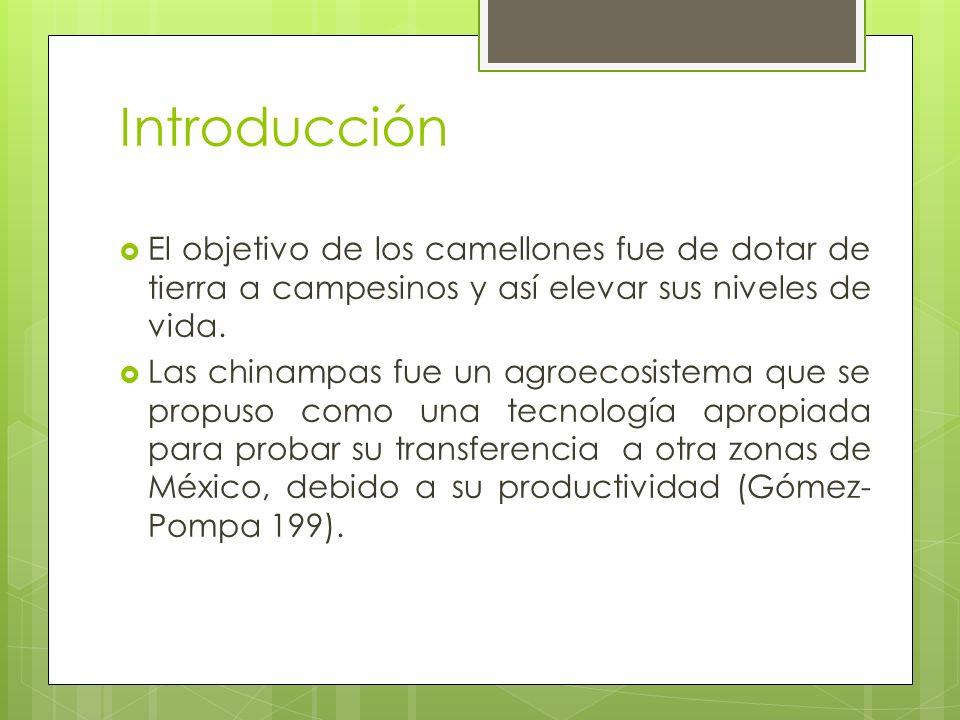 Bibliografía Pérez M.(2007).