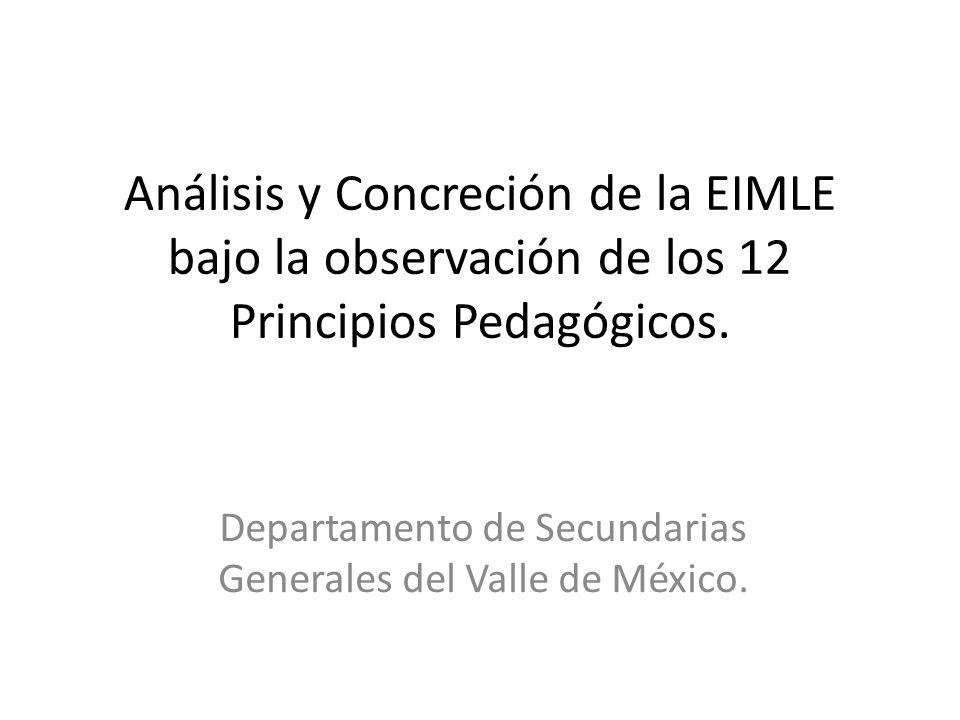 Análisis y Concreción de la EIMLE bajo la observación de los 12 Principios Pedagógicos.