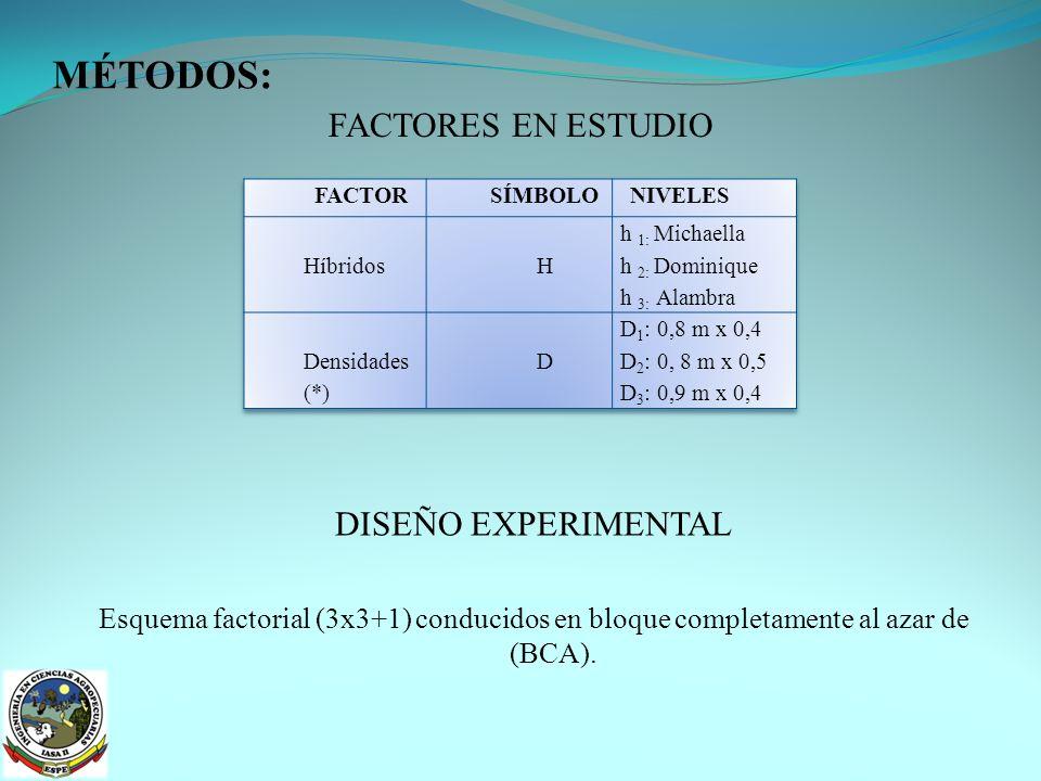 MÉTODOS TRATAMIENTOS A COMPARAR Número de repeticiones: tres