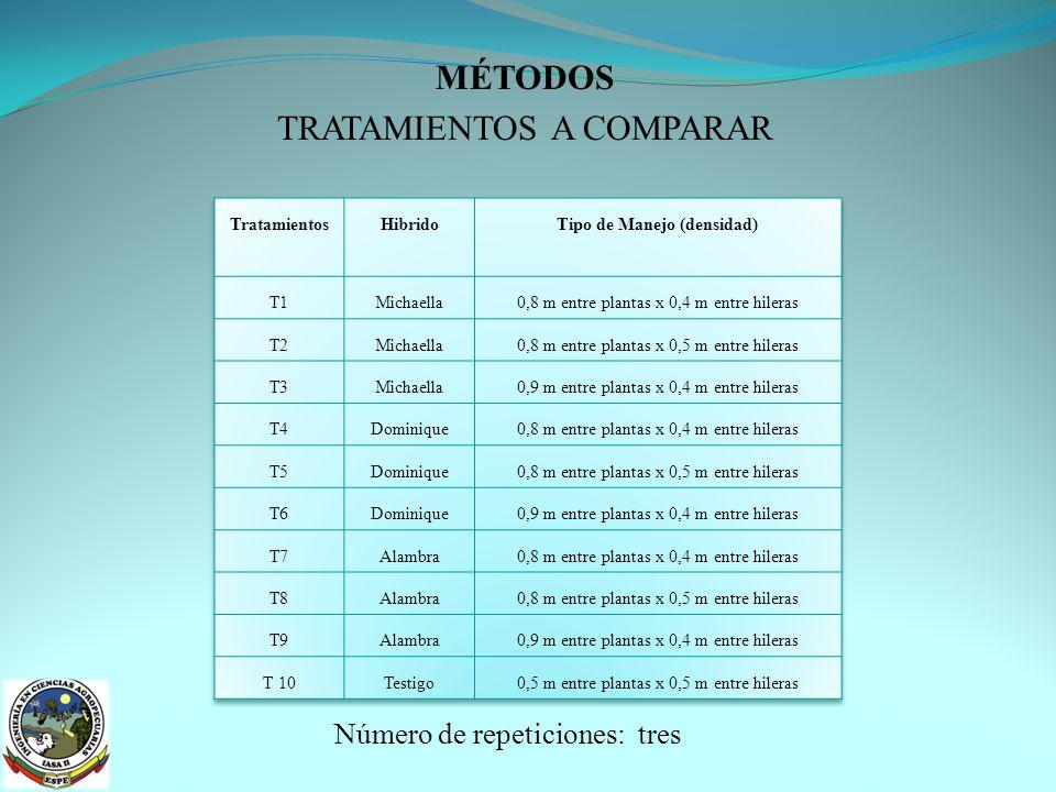 MÉTODOS ANÁLISIS ESTADĺSTICO Esquema del Análisis de Varianza ANÁLISIS FUNCIONAL Prueba de Tukey al 5 %, para las repeticiones y tratamientos.