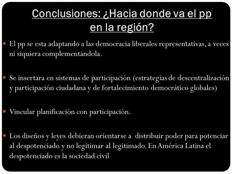 Conclusiones: ¿Hacia donde va el pp en la región.