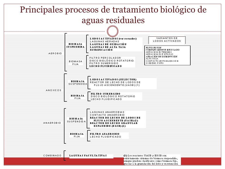 Principales procesos de tratamiento biológico de aguas residuales