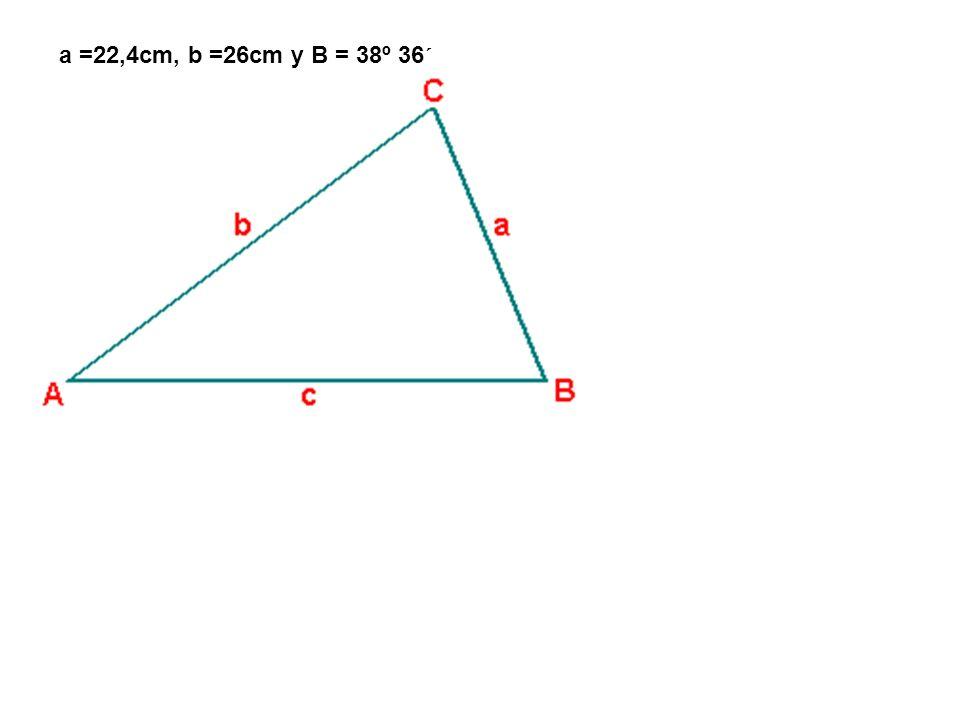 a =22,4cm, b =26cm y B = 38º 36´
