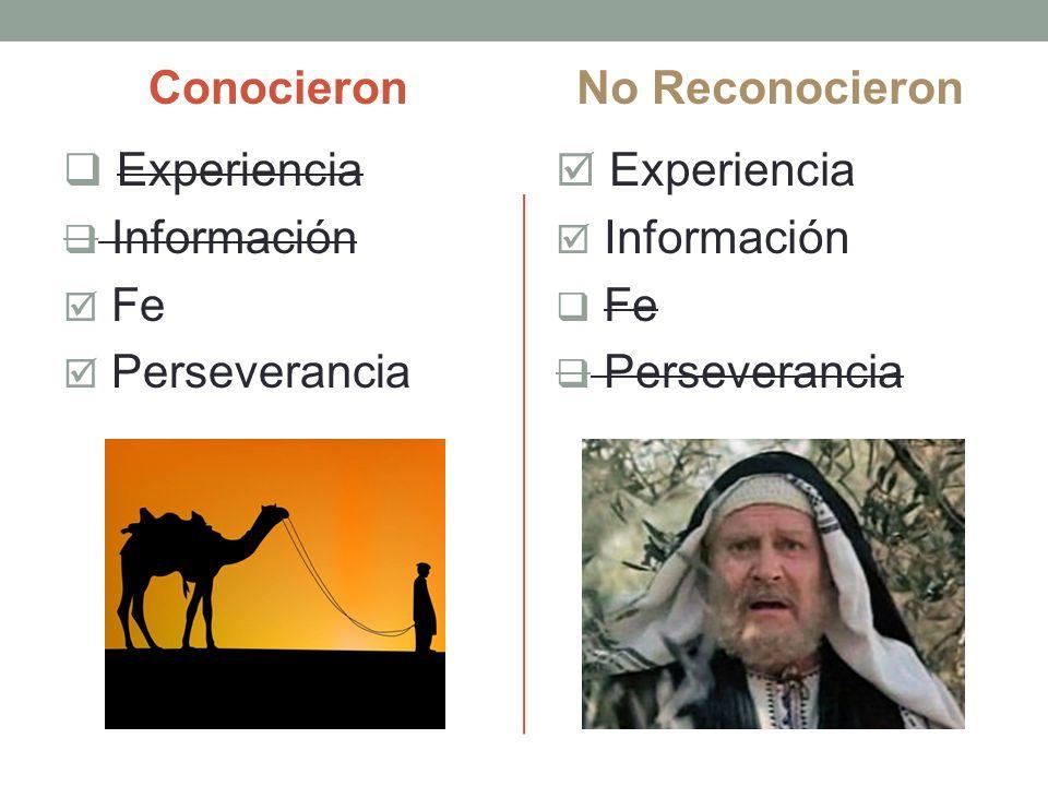 Conocieron Experiencia Información Fe Perseverancia No Reconocieron Experiencia Información Fe Perseverancia