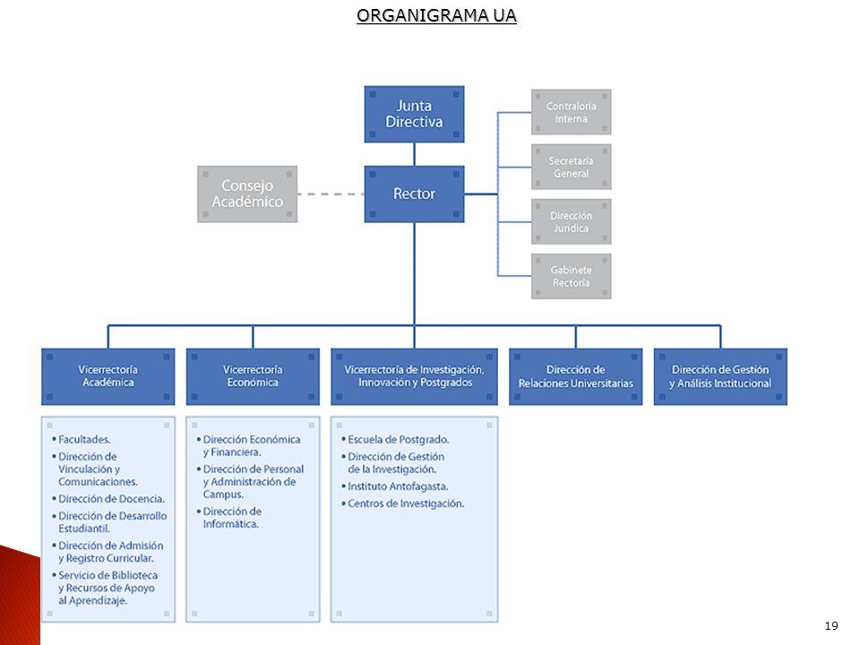 ORGANIGRAMA UA 19