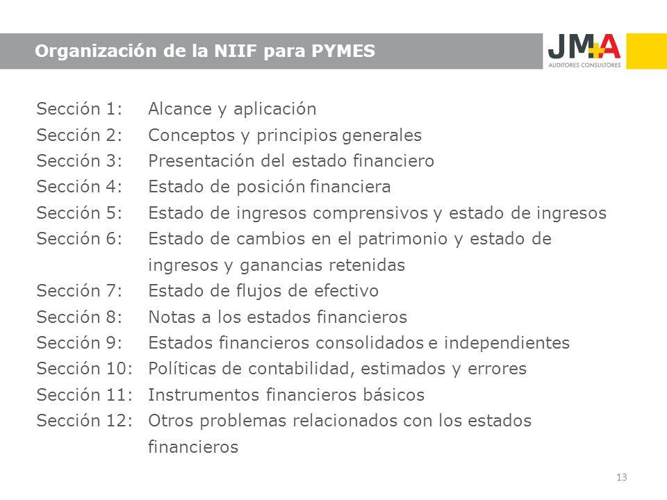 Sección 1: Alcance y aplicación Sección 2: Conceptos y principios generales Sección 3: Presentación del estado financiero Sección 4:Estado de posición