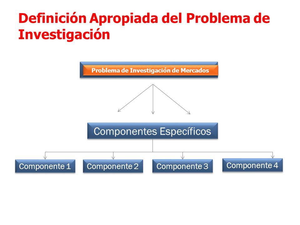 Planteamiento General PIM Componentes Específicos Definición Apropiada del Problema de Investigación Componente 1 Componente 2 Componente 3 Componente
