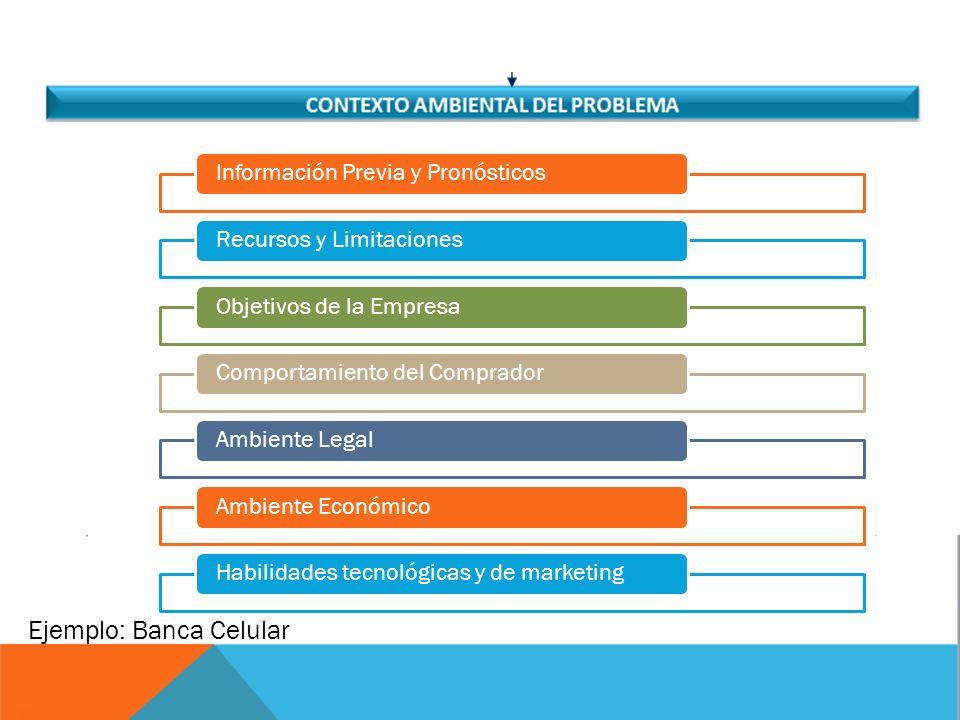 Información Previa y PronósticosRecursos y LimitacionesObjetivos de la EmpresaComportamiento del CompradorAmbiente LegalAmbiente EconómicoHabilidades