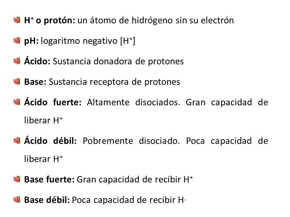 H + o protón: un átomo de hidrógeno sin su electrón pH: logaritmo negativo [H + ] Ácido: Sustancia donadora de protones Base: Sustancia receptora de p