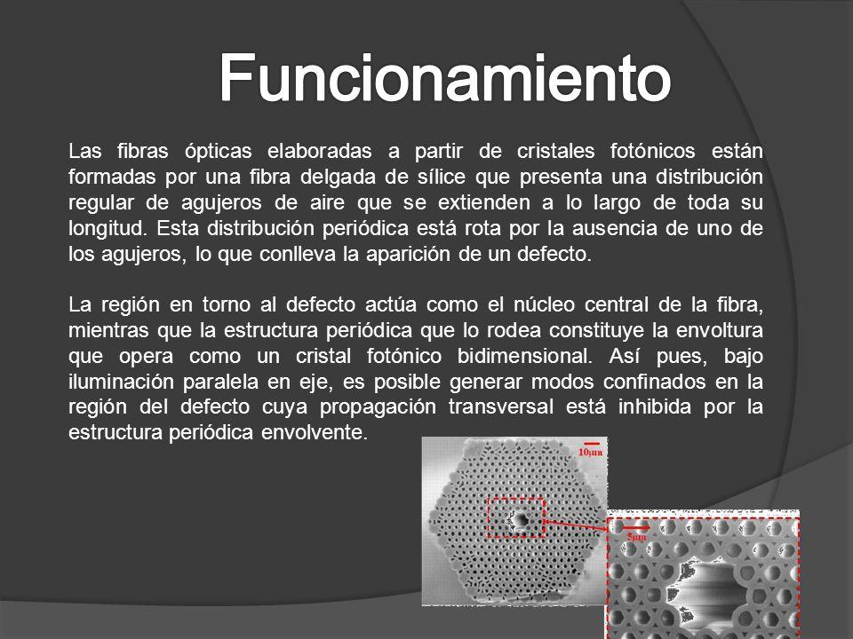 Las fibras ópticas elaboradas a partir de cristales fotónicos están formadas por una fibra delgada de sílice que presenta una distribución regular de