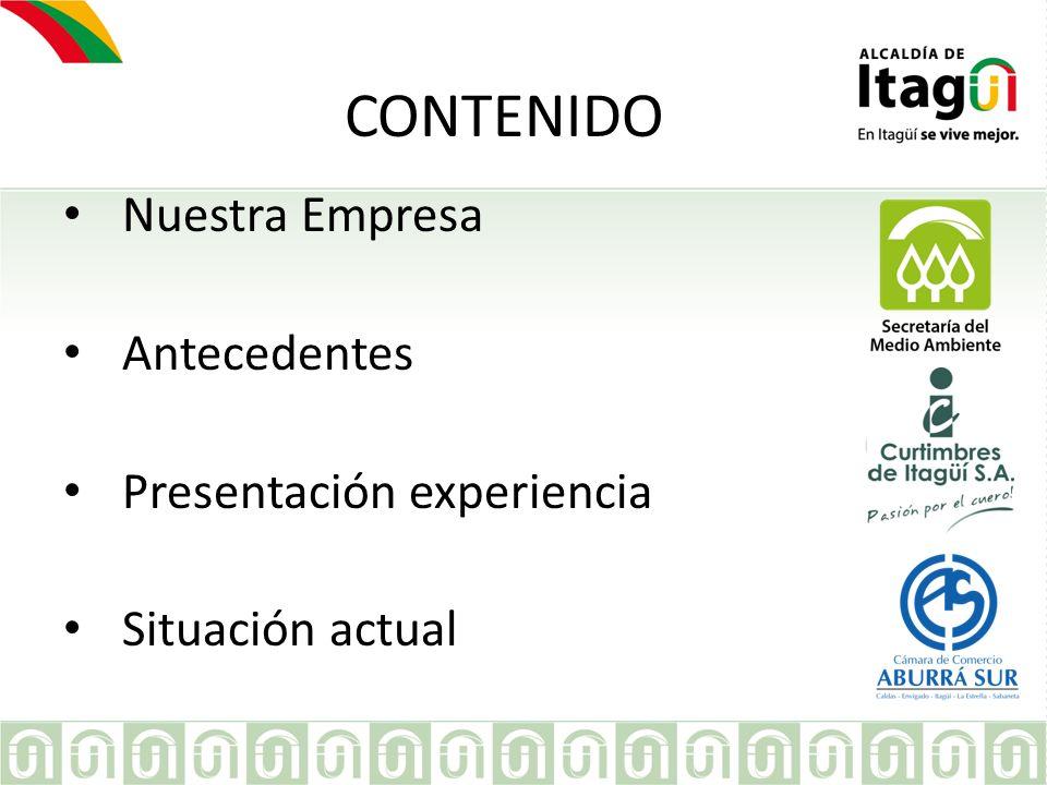 EMPRESA CONTENIDO Nuestra Empresa Antecedentes Presentación experiencia Situación actual