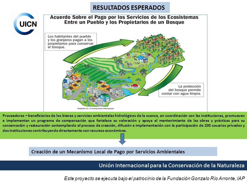 Este proyecto se ejecuta bajo el patrocinio de la Fundación Gonzalo Río Arronte, IAP Unión Internacional para la Conservación de la Naturaleza RESULTA