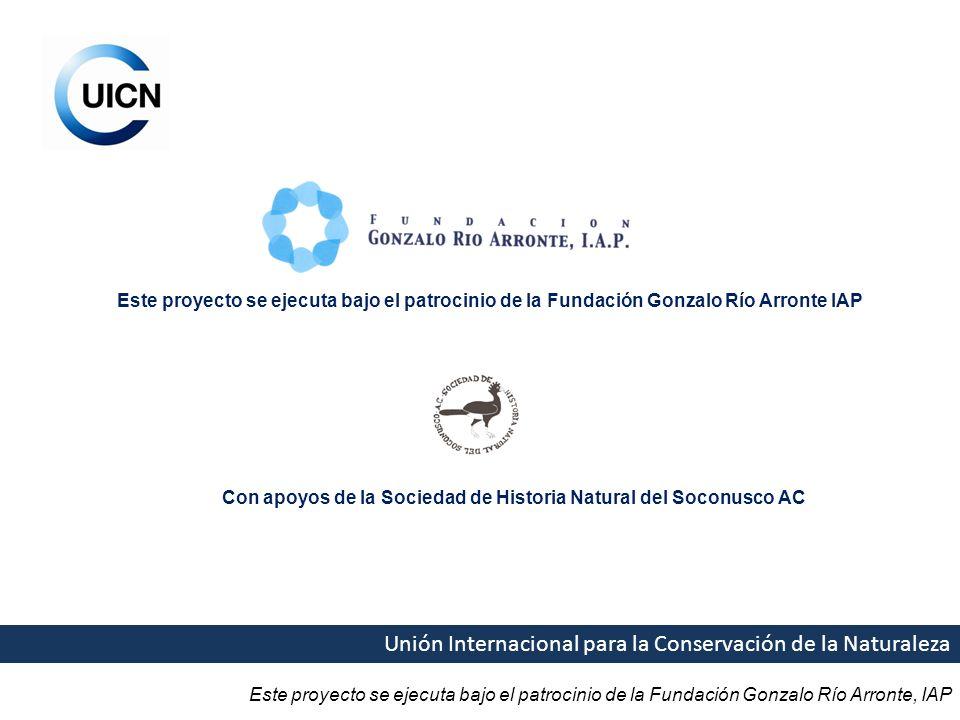 Este proyecto se ejecuta bajo el patrocinio de la Fundación Gonzalo Río Arronte, IAP Unión Internacional para la Conservación de la Naturaleza Este pr