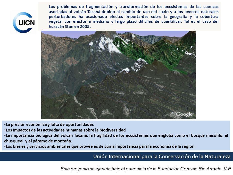 Este proyecto se ejecuta bajo el patrocinio de la Fundación Gonzalo Río Arronte, IAP Unión Internacional para la Conservación de la Naturaleza Los pro
