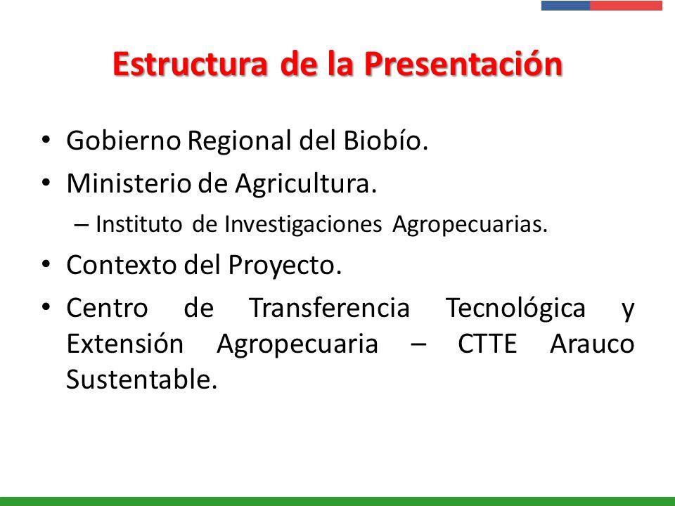 Presentación Institucional Instituto de Investigaciones Agropecuarias - INIA Estructura de la Presentación Gobierno Regional del Biobío. Ministerio de