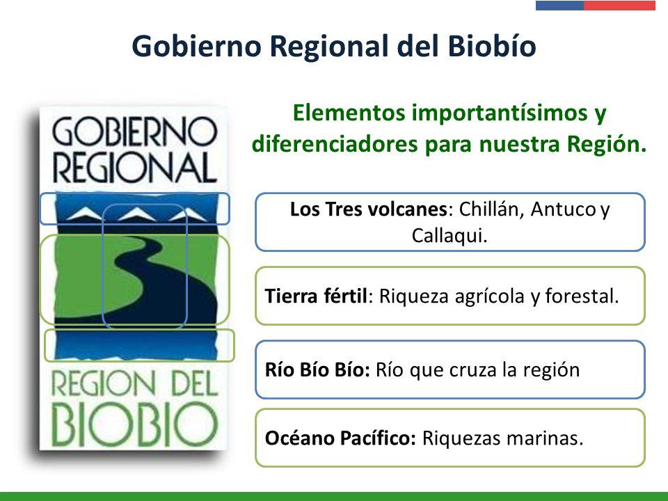 Presentación Institucional Instituto de Investigaciones Agropecuarias - INIA Gobierno Regional del Biobío Elementos importantísimos y diferenciadores