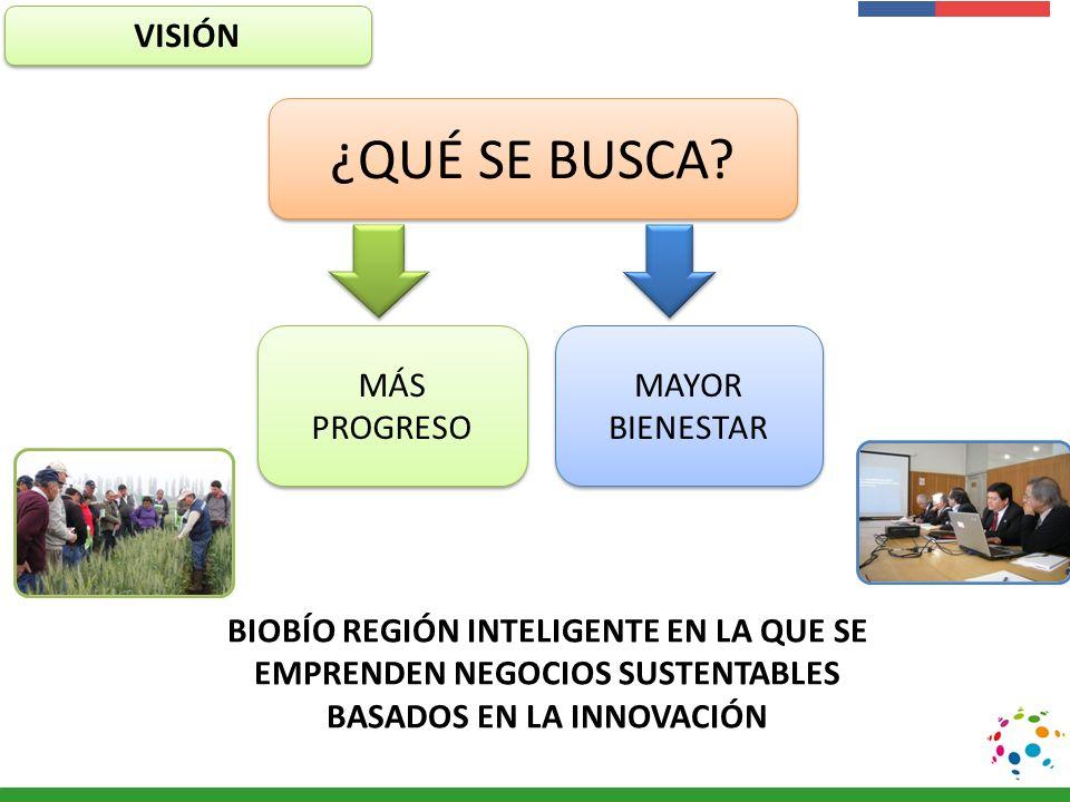 Presentación Institucional Instituto de Investigaciones Agropecuarias - INIA MÁS PROGRESO MAYOR BIENESTAR ¿QUÉ SE BUSCA? VISIÓN BIOBÍO REGIÓN INTELIGE