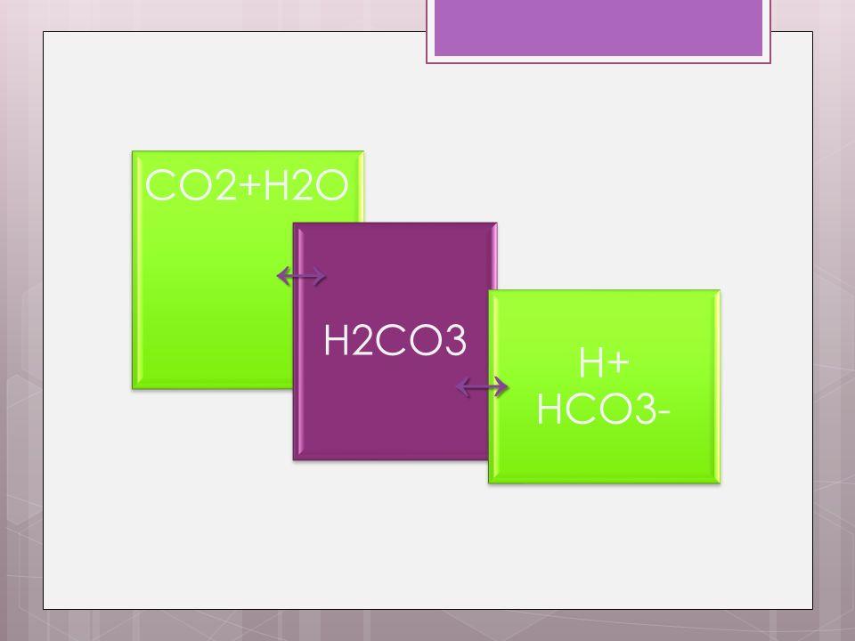 CO2+H2O H2CO3 H+ HCO3-