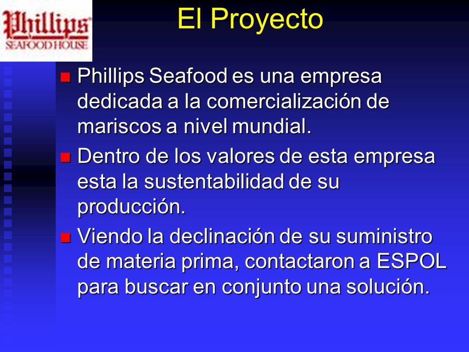 El Proyecto Phillips Seafood es una empresa dedicada a la comercialización de mariscos a nivel mundial. Phillips Seafood es una empresa dedicada a la
