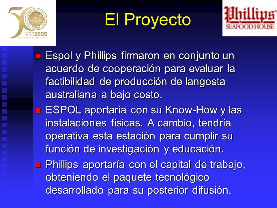 El Proyecto Espol y Phillips firmaron en conjunto un acuerdo de cooperación para evaluar la factibilidad de producción de langosta australiana a bajo