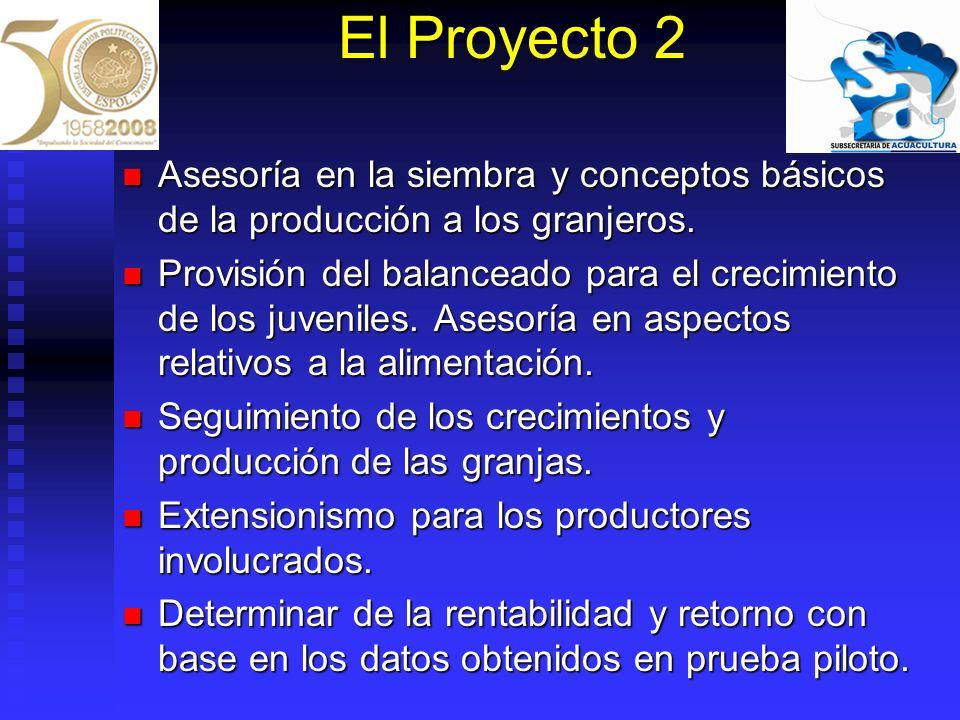 El Proyecto 2 Asesoría en la siembra y conceptos básicos de la producción a los granjeros. Asesoría en la siembra y conceptos básicos de la producción