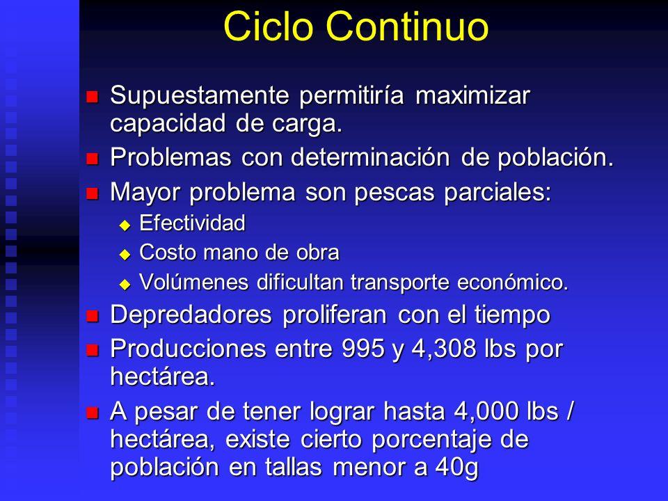 Ciclo Continuo Supuestamente permitiría maximizar capacidad de carga. Supuestamente permitiría maximizar capacidad de carga. Problemas con determinaci