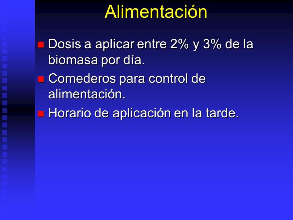 Alimentación Dosis a aplicar entre 2% y 3% de la biomasa por día. Dosis a aplicar entre 2% y 3% de la biomasa por día. Comederos para control de alime