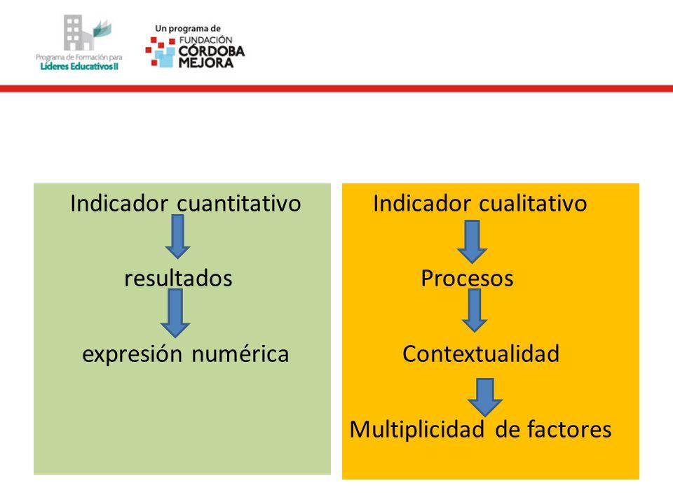 Indicador cuantitativo resultados expresión numérica Indicador cualitativo Procesos Contextualidad Multiplicidad de factores