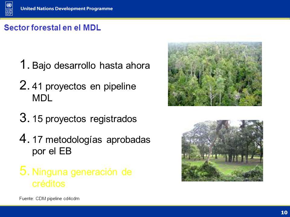 10 Sector forestal en el MDL 1. Bajo desarrollo hasta ahora 2.