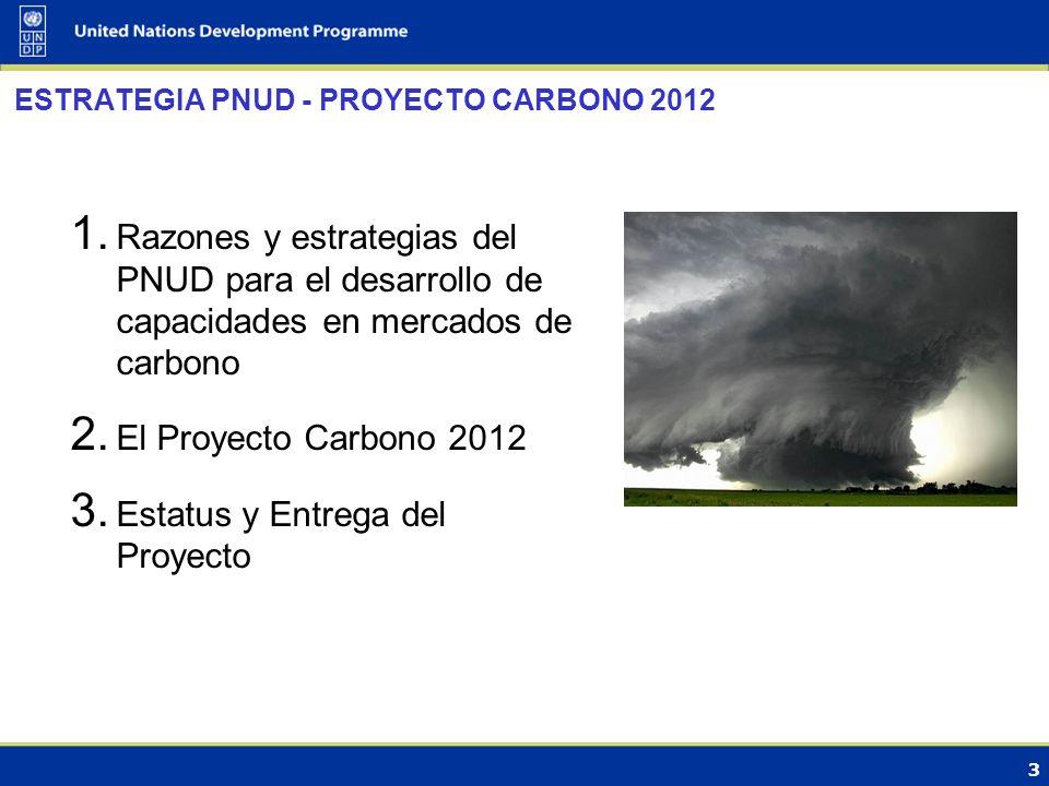 3 ESTRATEGIA PNUD - PROYECTO CARBONO 2012 1.