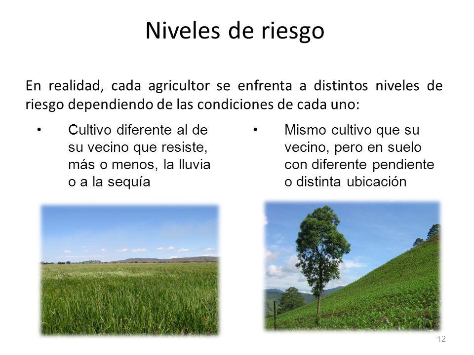Niveles de riesgo En realidad, cada agricultor se enfrenta a distintos niveles de riesgo dependiendo de las condiciones de cada uno: 12 Mismo cultivo