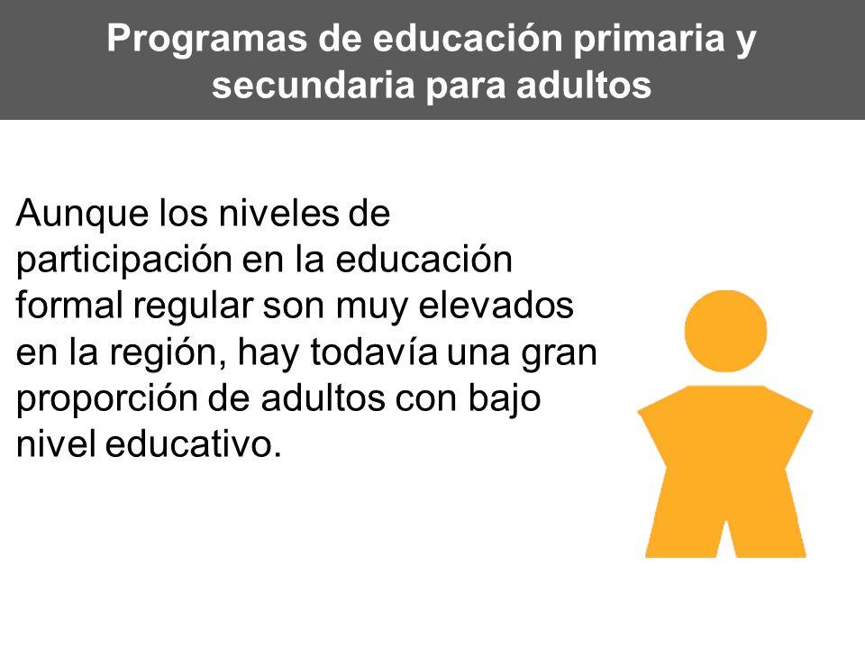 Programas de educación primaria y secundaria para adultos Aunque los niveles de participación en la educación formal regular son muy elevados en la re