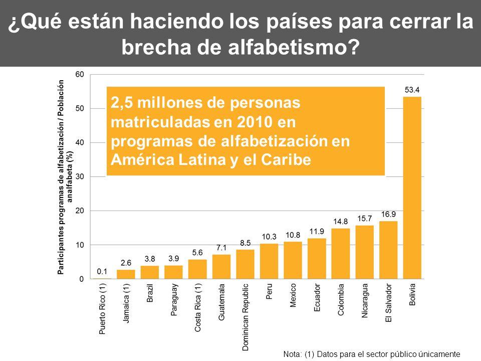 ¿Qué están haciendo los países para cerrar la brecha de alfabetismo? 2,5 millones de personas matriculadas en 2010 en programas de alfabetización en A
