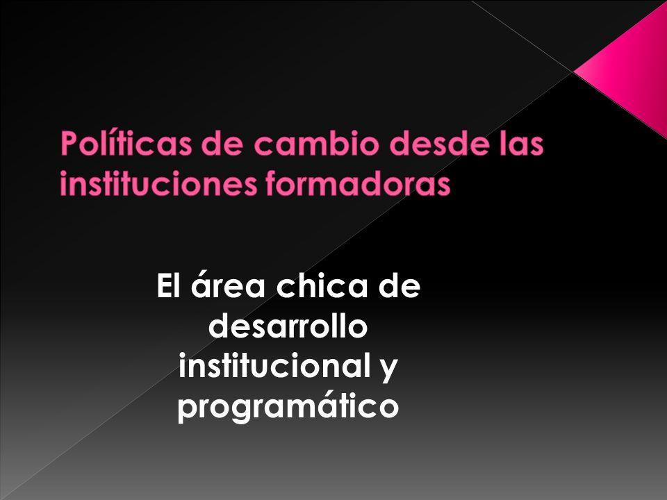 El área chica de desarrollo institucional y programático