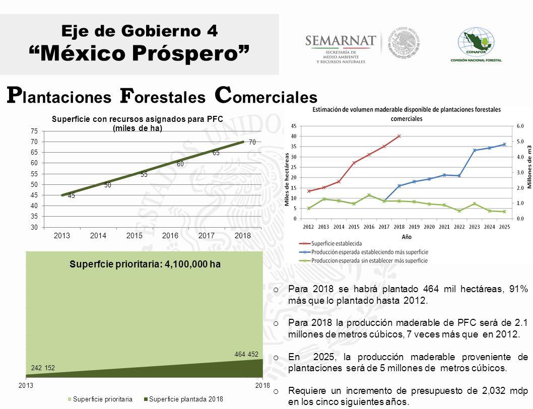 Eje de Gobierno 4 México Próspero o Para 2018 se habrá plantado 464 mil hectáreas, 91% más que lo plantado hasta 2012. o Para 2018 la producción mader