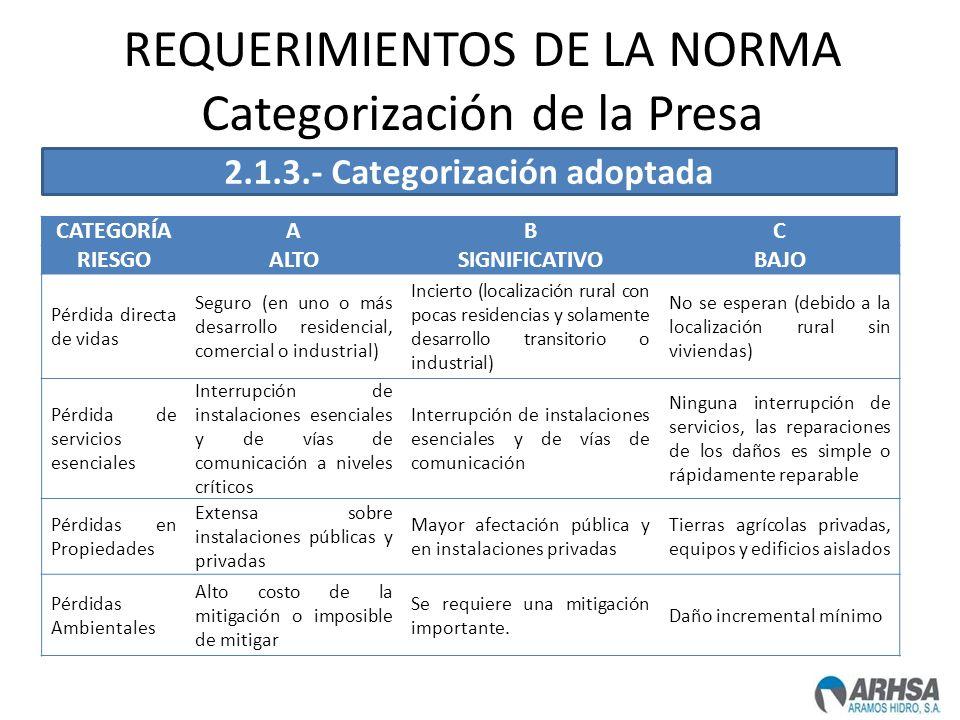 REQUERIMIENTOS DE LA NORMA Categorización de la Presa CATEGORÍAABC RIESGOALTOSIGNIFICATIVOBAJO Pérdida directa de vidas Seguro (en uno o más desarroll