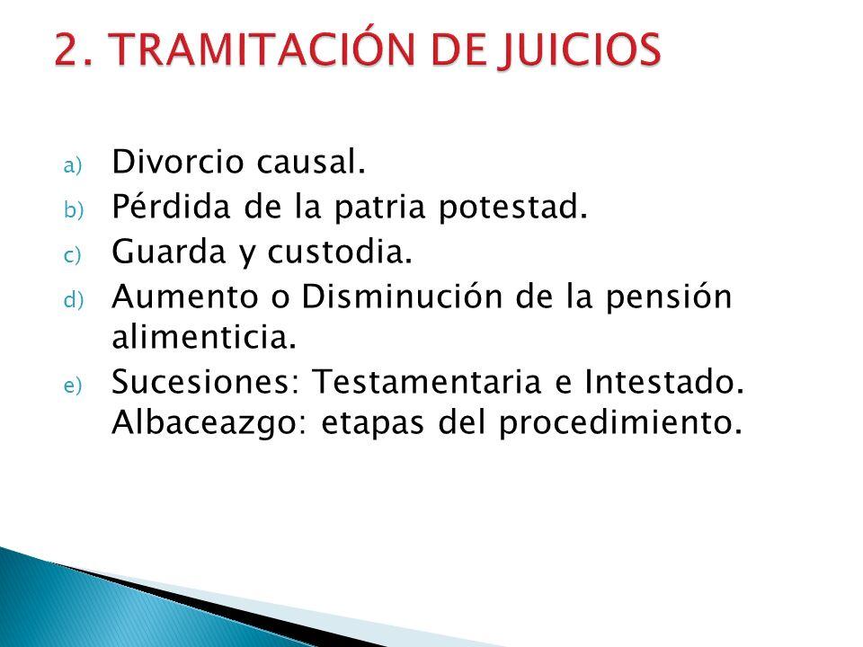 a) Divorcio causal. b) Pérdida de la patria potestad. c) Guarda y custodia. d) Aumento o Disminución de la pensión alimenticia. e) Sucesiones: Testame