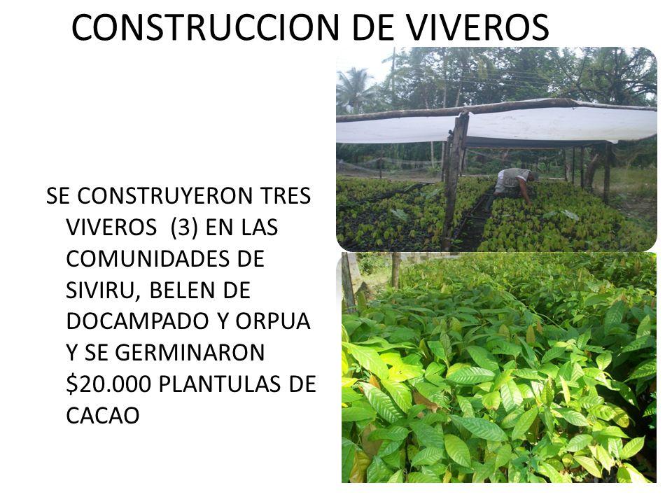 CONSTRUCCION DE VIVEROS SE CONSTRUYERON TRES VIVEROS (3) EN LAS COMUNIDADES DE SIVIRU, BELEN DE DOCAMPADO Y ORPUA Y SE GERMINARON $20.000 PLANTULAS DE