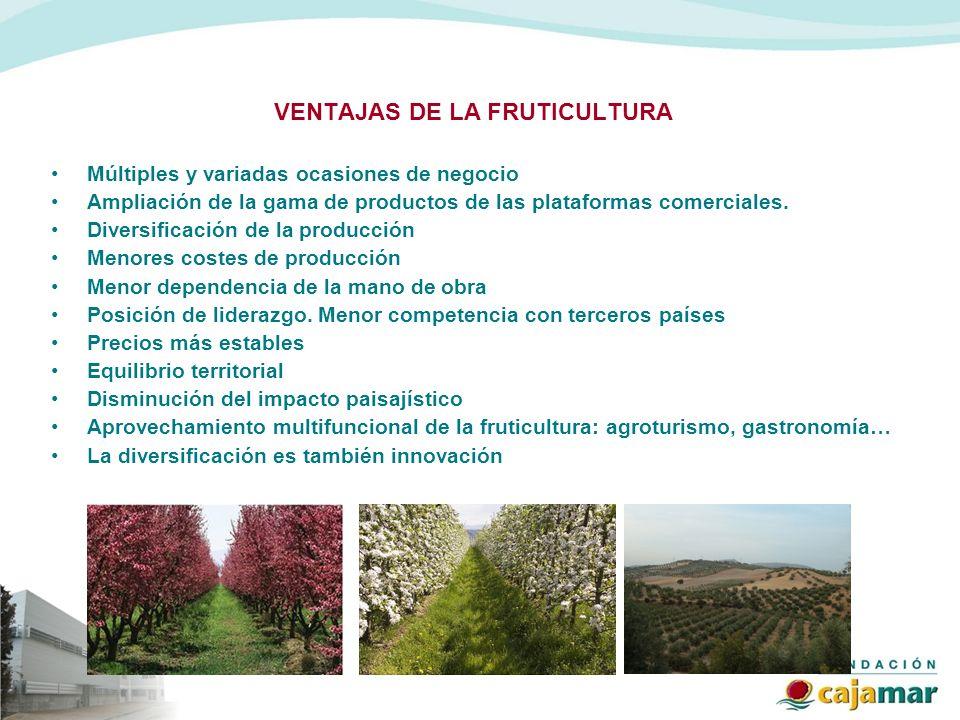 VENTAJAS DE LA FRUTICULTURA Múltiples y variadas ocasiones de negocio Ampliación de la gama de productos de las plataformas comerciales. Diversificaci