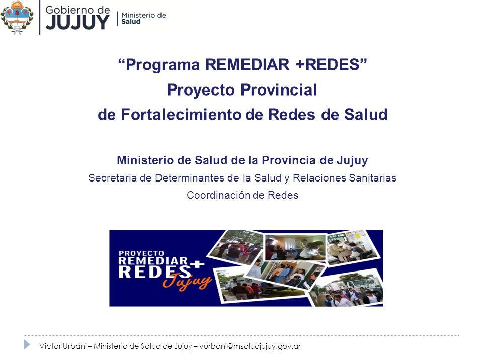 Programa REMEDIAR +REDES Proyecto Provincial de Fortalecimiento de Redes de Salud Ministerio de Salud de la Provincia de Jujuy Secretaria de Determina