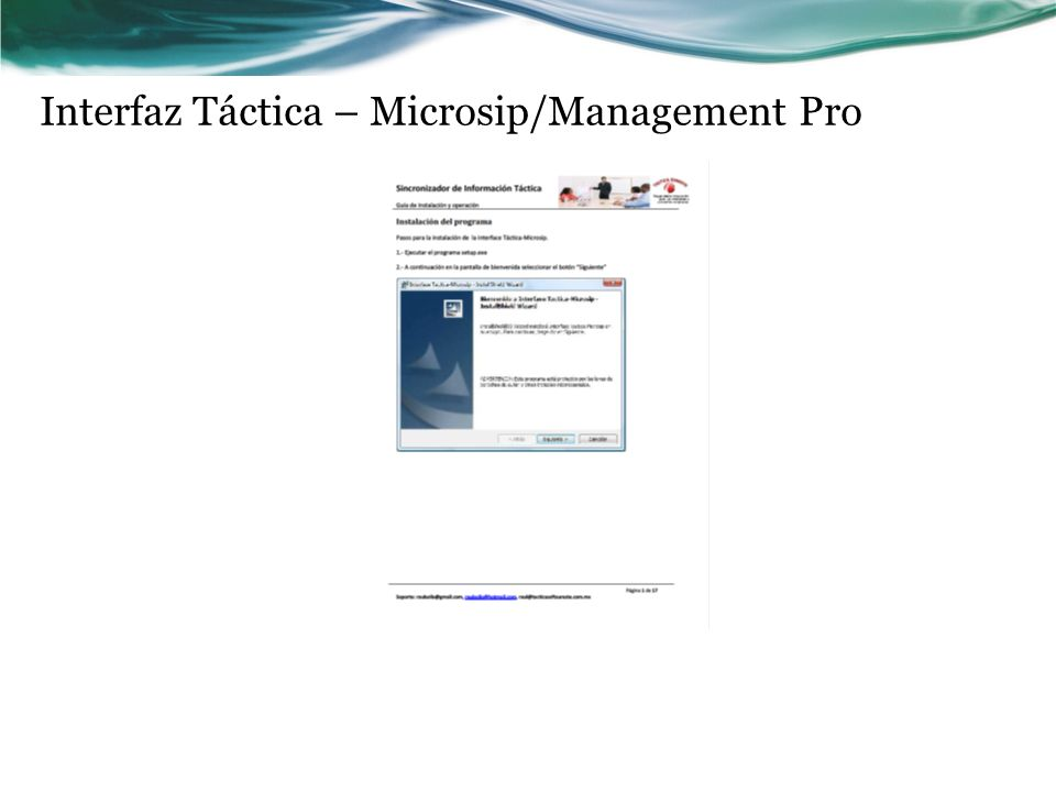 Interfaz Táctica – Microsip/Management Pro