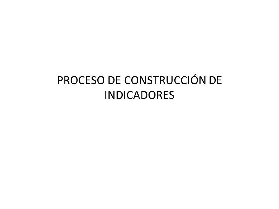 PROCESO DE CONSTRUCCIÓN DE INDICADORES