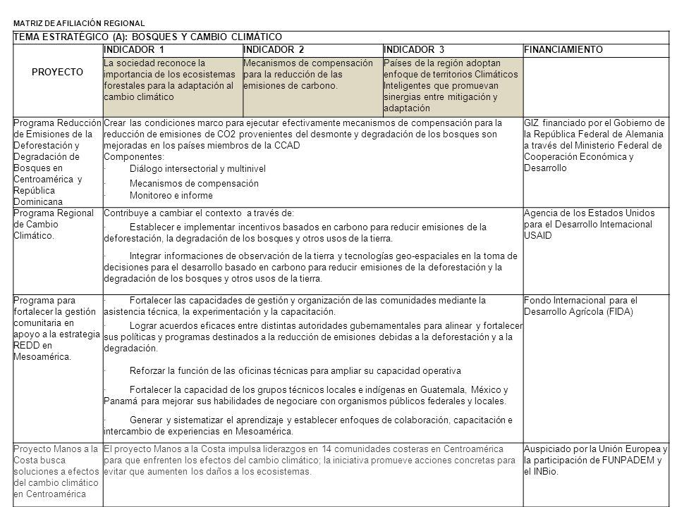 MATRIZ DE AFILIACIÓN REGIONAL TEMA ESTRATÉGICO (A): BOSQUES Y CAMBIO CLIMÁTICO PROYECTO INDICADOR 1INDICADOR 2INDICADOR 3FINANCIAMIENTO La sociedad re