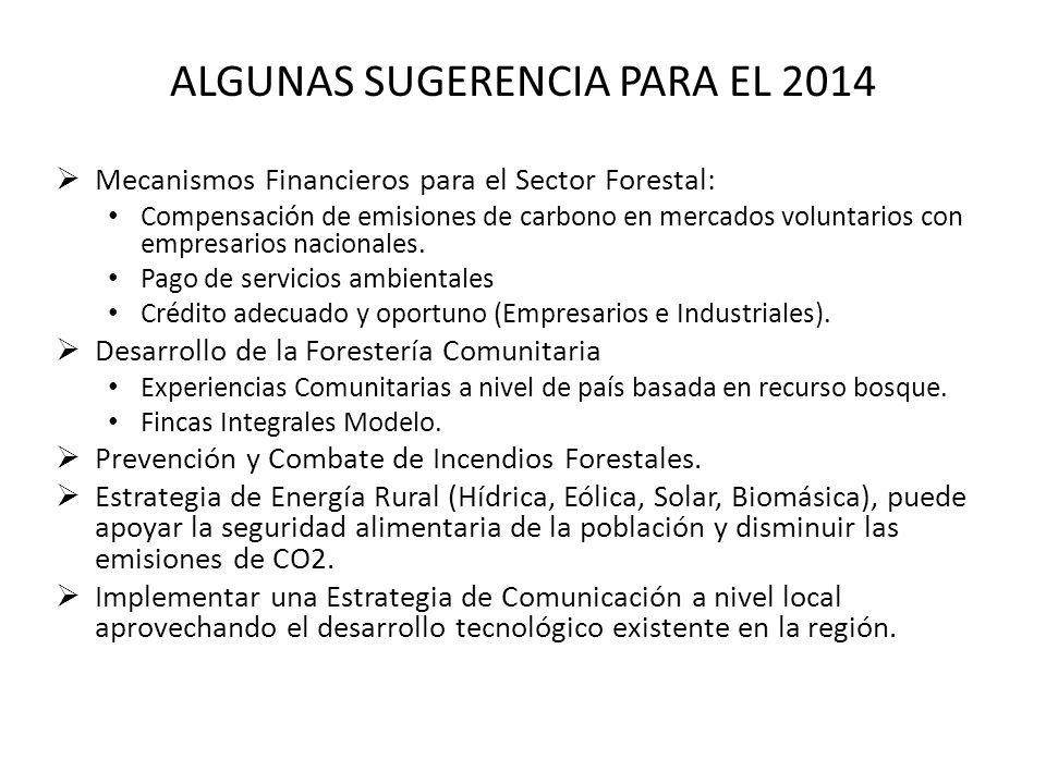 ALGUNAS SUGERENCIA PARA EL 2014 Mecanismos Financieros para el Sector Forestal: Compensación de emisiones de carbono en mercados voluntarios con empre