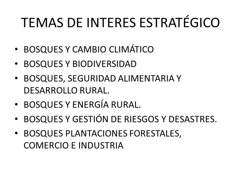 TEMAS DE INTERES ESTRATÉGICO BOSQUES Y CAMBIO CLIMÁTICO BOSQUES Y BIODIVERSIDAD BOSQUES, SEGURIDAD ALIMENTARIA Y DESARROLLO RURAL. BOSQUES Y ENERGÍA R